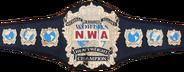 NWA World Heavyweight Championship Severn