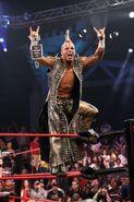 TNA Victory Road 2011.40