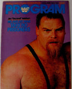 WWF Wrestling Program - Volume 134