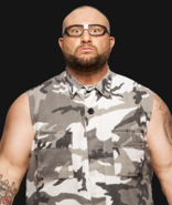 8 RAW - Bubba Ray Dudley