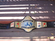 WWF World Champion (old2)