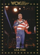 1991 WCW Collectible Trading Cards (Championship Marketing) U.S.A. Sting 84