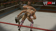WWE 2K14 Screenshot.135