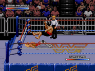 WWF Rage in the Cage (Game).5