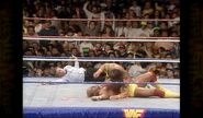 Hogan vs. Warrior 17