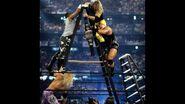 WrestleMania 17.14