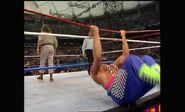WrestleMania VIII.00047