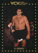 1991 WCW Collectible Trading Cards (Championship Marketing) El Gigante 78