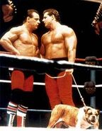 The British Bulldogs3