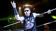 WWE World Tour 2015 - Minehead.4