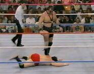 1.9.88 WWF Superstars.00017