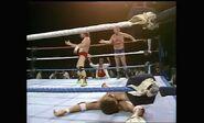 WrestleMania II.00065