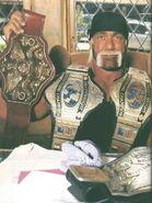 Hulk Hogan 22