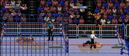 WWF Rage in the Cage (Game).1