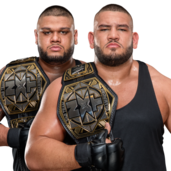 The Authors of Pain WWE NXT Tag Team Championship (new design)