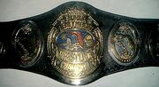 NWA Florida Champion (old)
