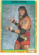 1995 WWF Wrestling Trading Cards (Merlin) Adam Bomb 10