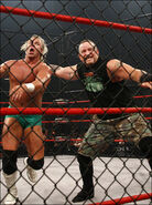 New age outlaws (17)