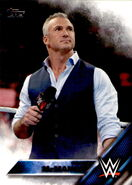 2016 WWE (Topps) Then, Now, Forever Shane McMahon 143