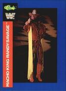 1991 WWF Classic Superstars Cards Randy Savage 134