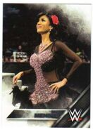 2016 WWE (Topps) Then, Now, Forever Rosa Mendes 139