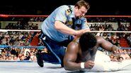 SummerSlam 1988-15