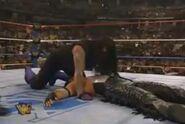 Undertaker WM 12