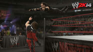 WWE 2K14 Screenshot.48