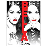 Bella twins poster