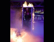 Survivor Series 2005.6