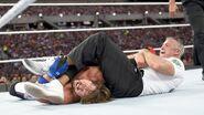 WrestleMania 33.32