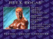 WWF Royal Rumble (JUE) -!-017