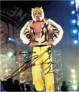 Tiger Mask IV 3