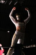 Lady Afrodita - CMLL - 428192
