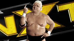 Dusty Rhodes Tag Team Classic Tournament (2015)