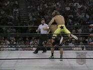 November 13, 1995 Monday Nitro.00008