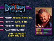 WWF Wrestlemania Arcade (F) (Sep 1995)013