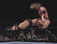 SummerSlam 2000.5