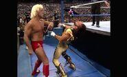 WrestleMania VIII.00025