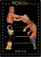 1991 WCW Collectible Trading Cards (Championship Marketing) Sting and Ric 20