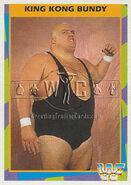 1995 WWF Wrestling Trading Cards (Merlin) King Kong Bundy 17