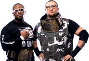 Dudleyz wwf tag champs 01