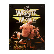 Steve Austin & The Rock WrestleMania XV Acrylic Wall Art