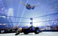 SummerSlam 2008.5