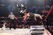 TNA Victory Road 2011.5