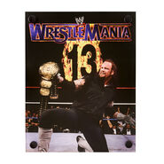 The Undertaker WrestleMania XIII Acrylic Wall Art