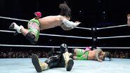 WWE World Tour 2014 - Glasgow.12