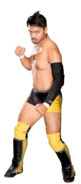 Hideo Itami Stat Photo