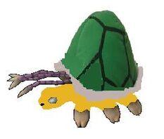 Warped tortoise