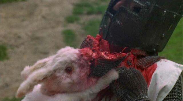File:Killer Bunny.jpg